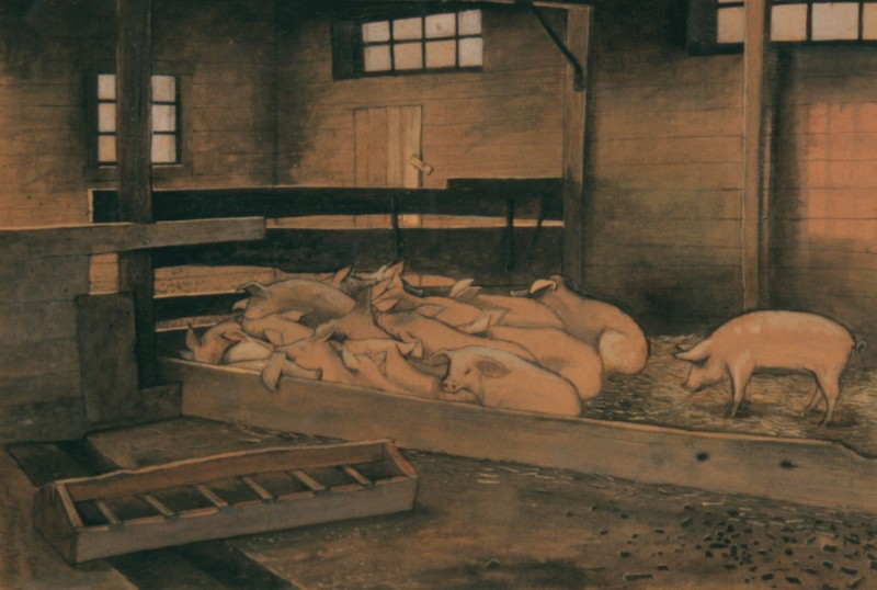 My Father's Farm (Sleeping Pigs), William Kurelek, ca. 1961