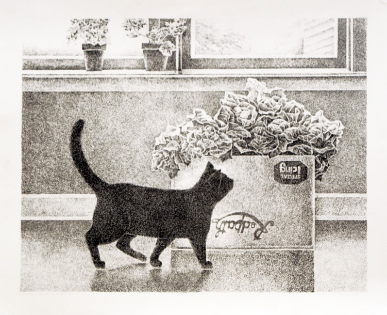 "Mary Pratt, Cabbage, Carton and Cat,  1977, lithograph, 6 of 25, 19"" x 23.5"""